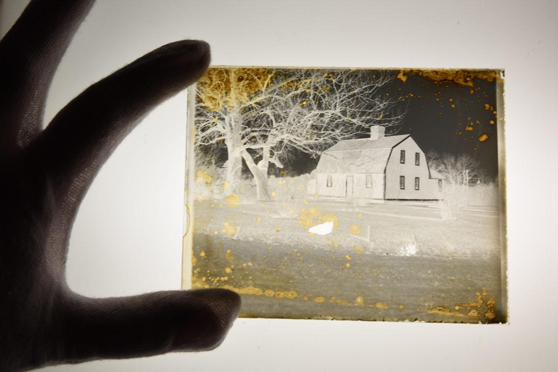 glass negatives